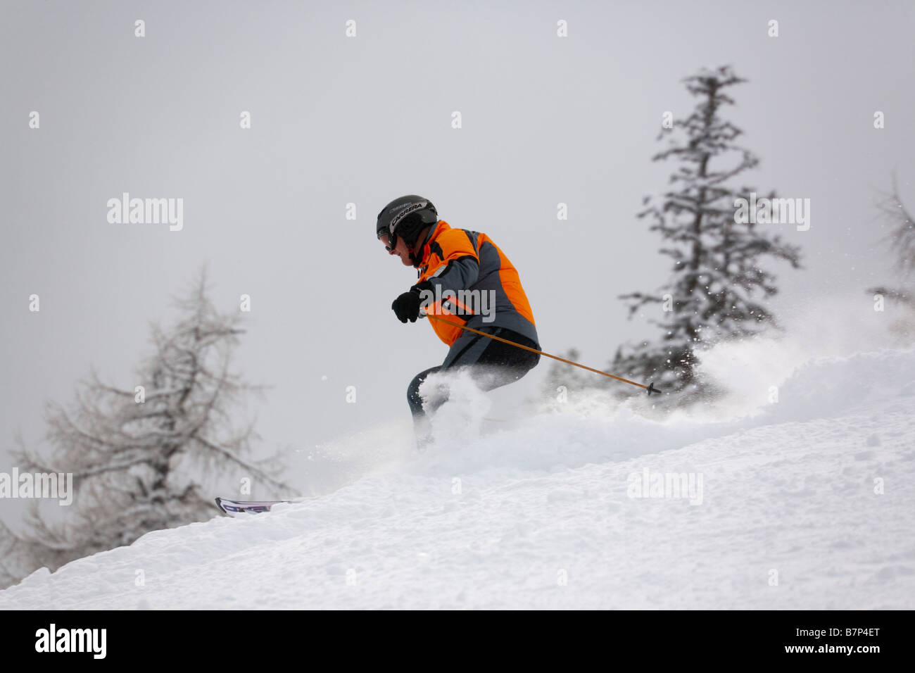 Austria Skier skiing fast downhill in powder snow on piste in Austrian Alps - Stock Image