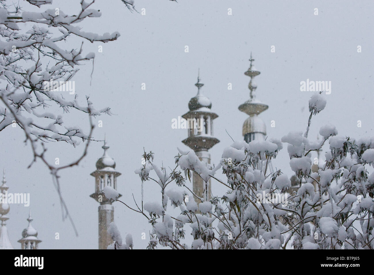 Ornate turrets of the Royal Pavilion Brighton at dawn in distance behind snow covered bush in the Pavilion gardens Stock Photo