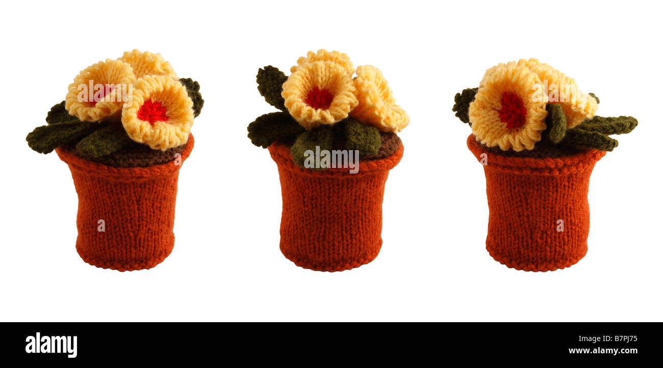 Novelty knitted flowers and pots - cut-outs against a white background - Stock Image