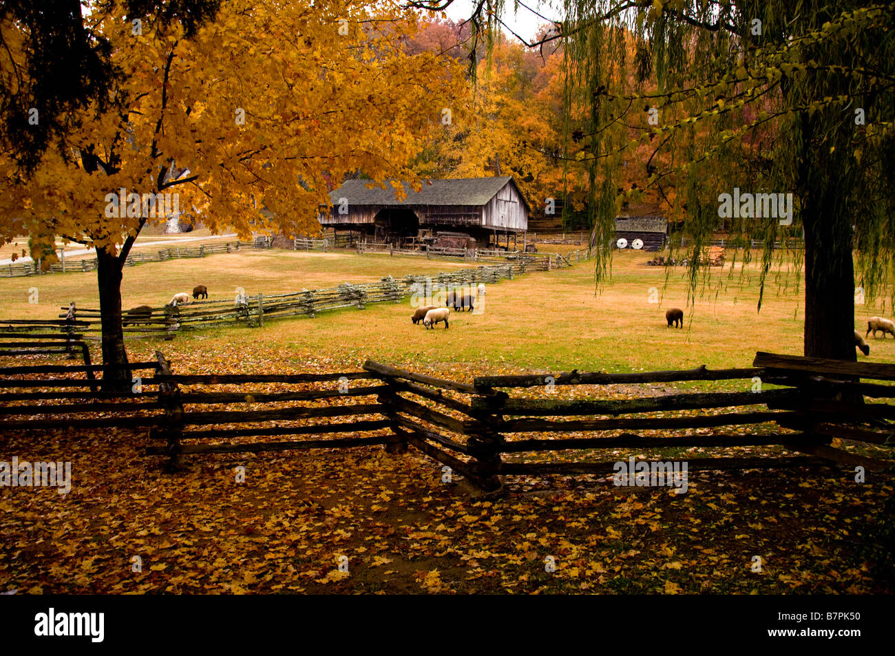 Museum of Appalachia Norris Tennessee - Stock Image
