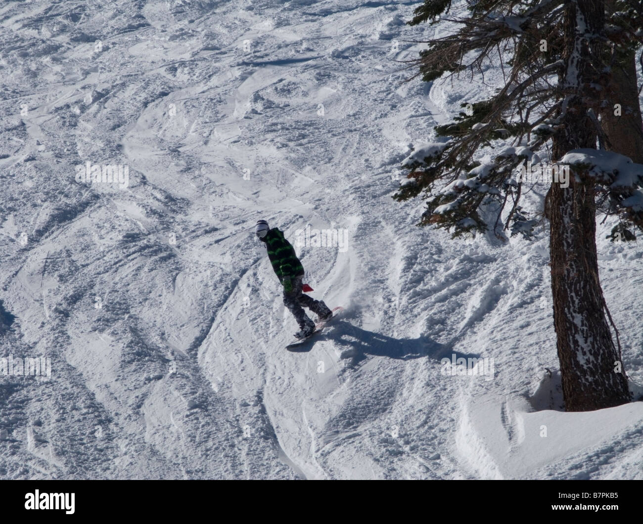 "Snowboarder in the morning sun on the ""Face"" run at Alpine Meadows Ski Area above North Lake Tahoe, CA. Stock Photo"