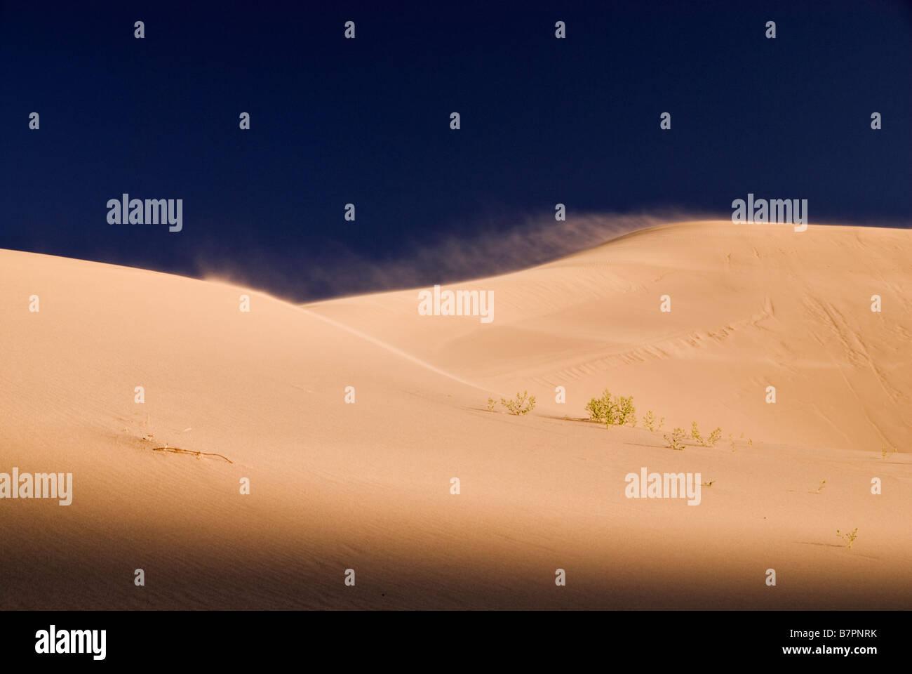 Landscape of the Khongoryn Els dunes, Gobi desert, Mongolia. - Stock Image
