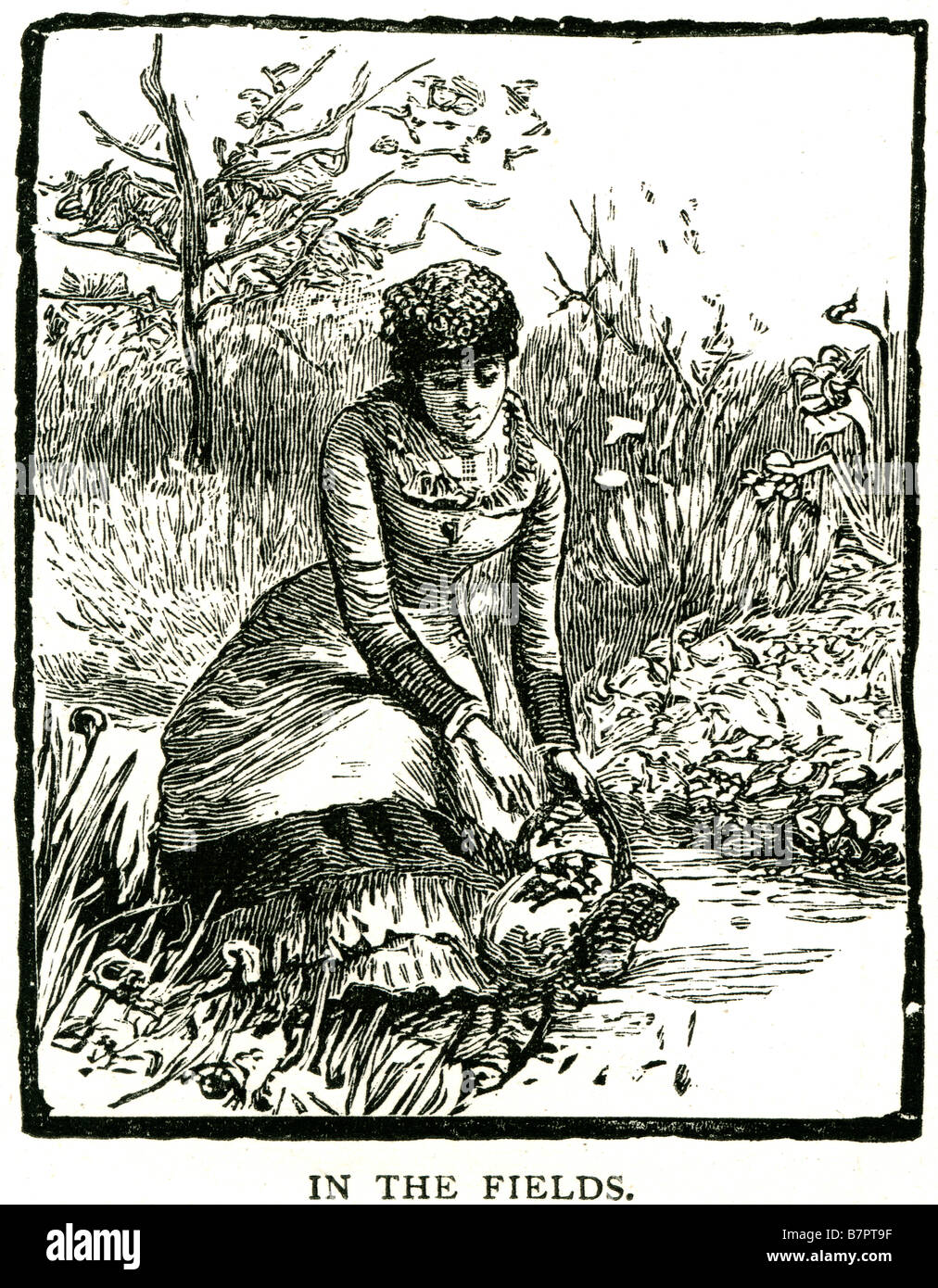 Fields country side women lady picking outside traditional clothing summer outside flowers crouched park