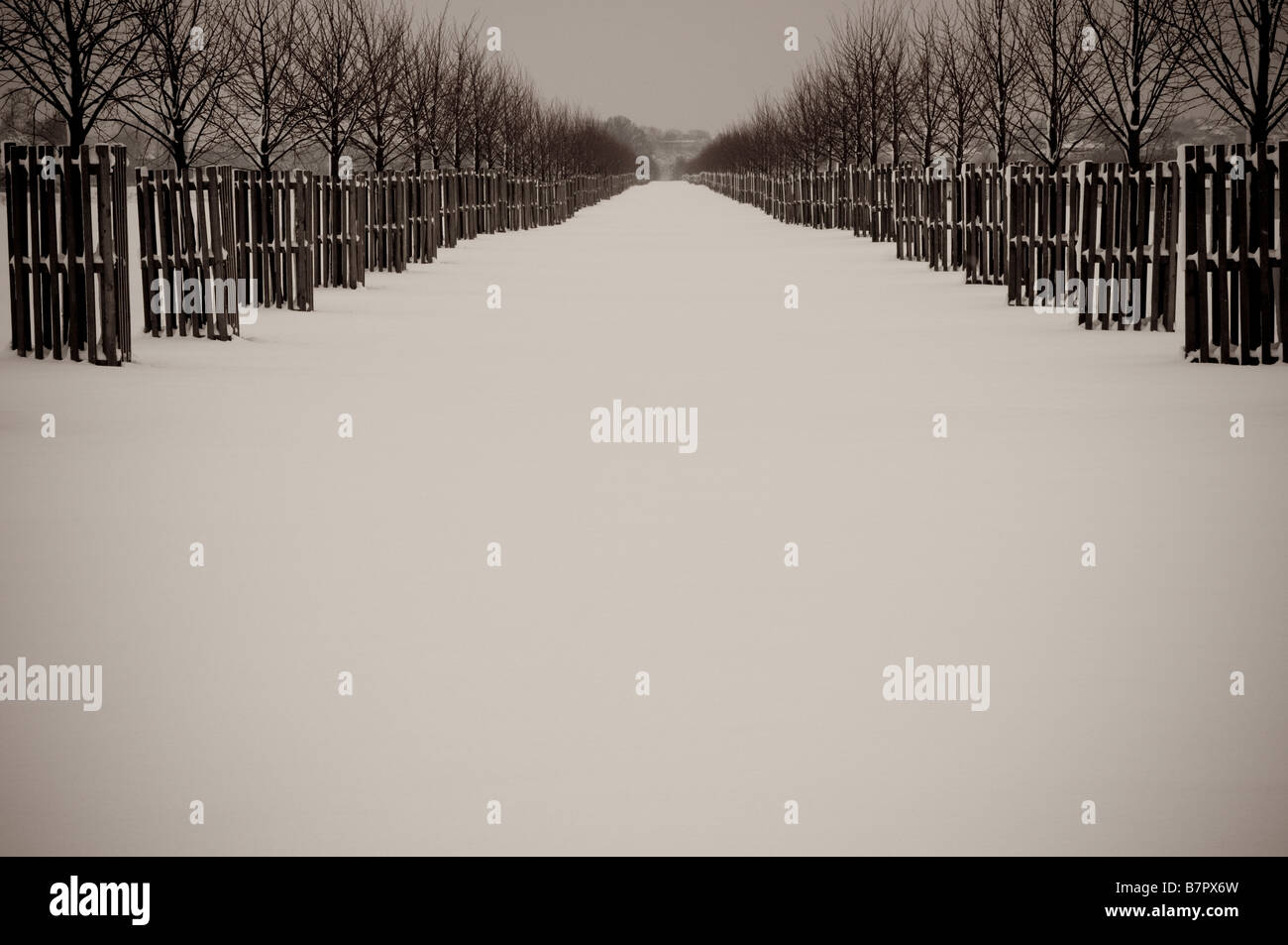 Home park in snow Surrey UK - Stock Image