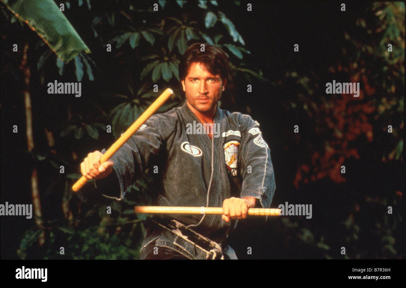 L'arme parfaite Perfect Weapon, The  Year: 1991 USA  Director: Mark DiSalle - Stock Image