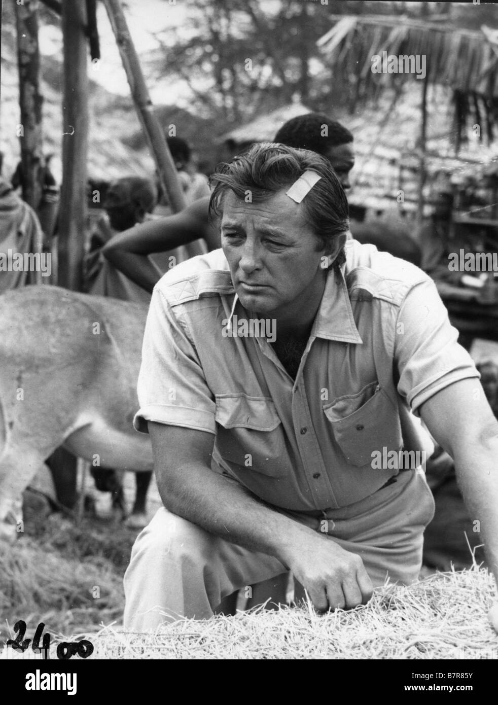 L'aventurier du Kenya Mister Moses  Year: 1965 USA Robert Mitchum,  Director: Ronald Neame Stock Photo