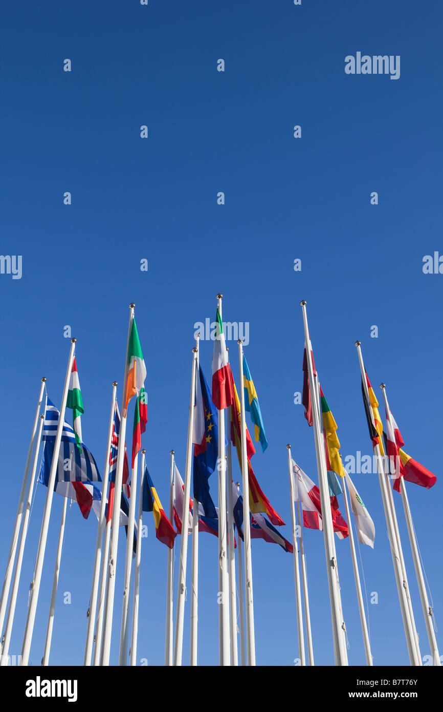 European union flags - Stock Image