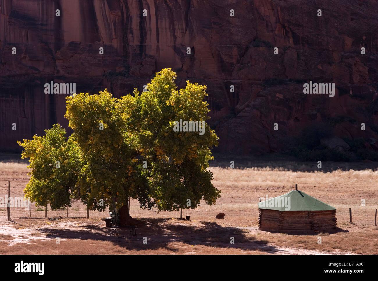 Navajo hogan Canyon de Chelly National Monument Arizona USA - Stock Image