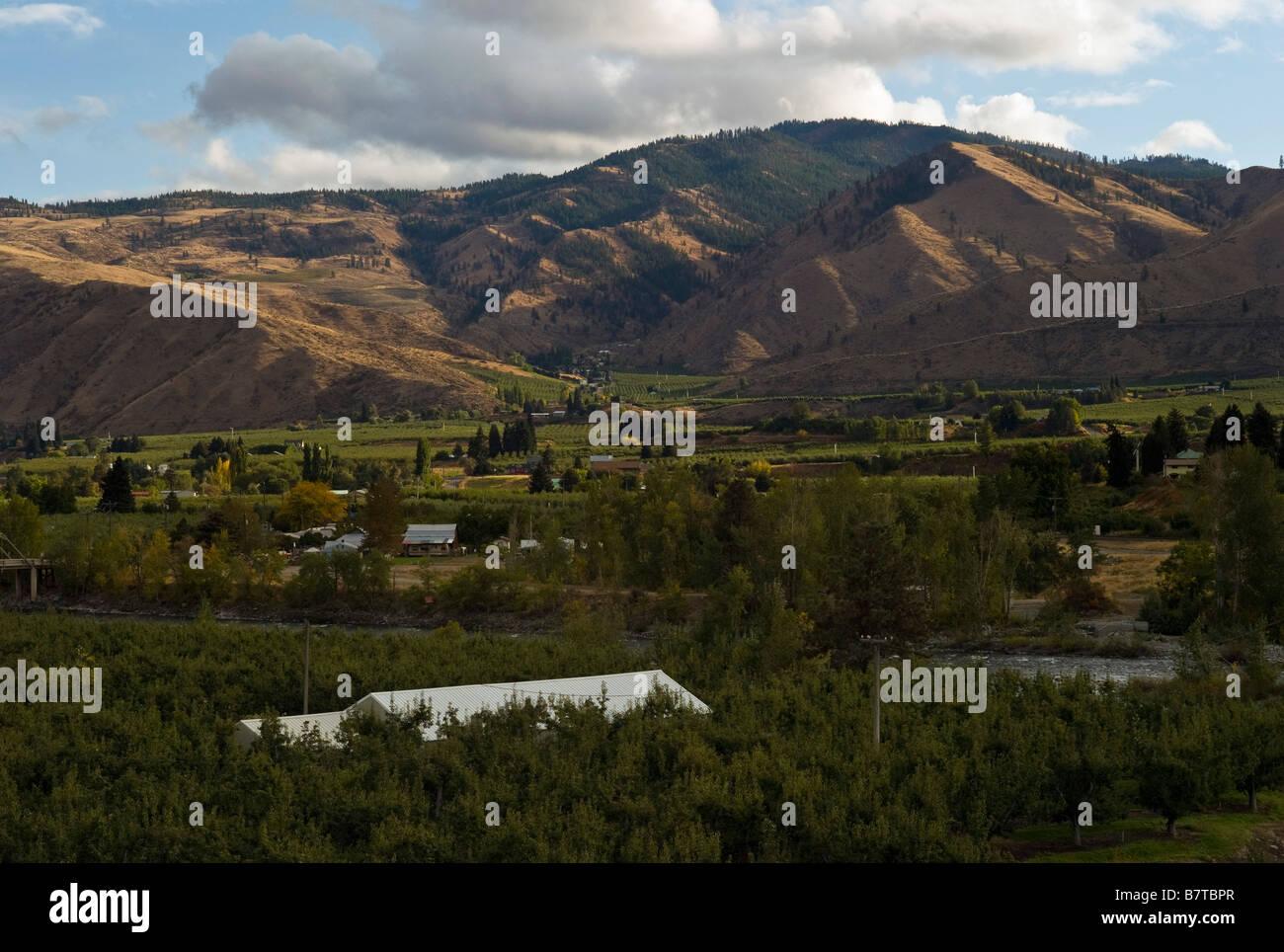 Wenatchee Valley fruit orchards Washington State USA - Stock Image