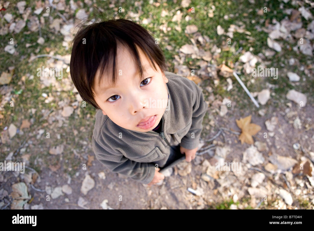 High angle portrait of grumpy two year old Japanese boy - Stock Image