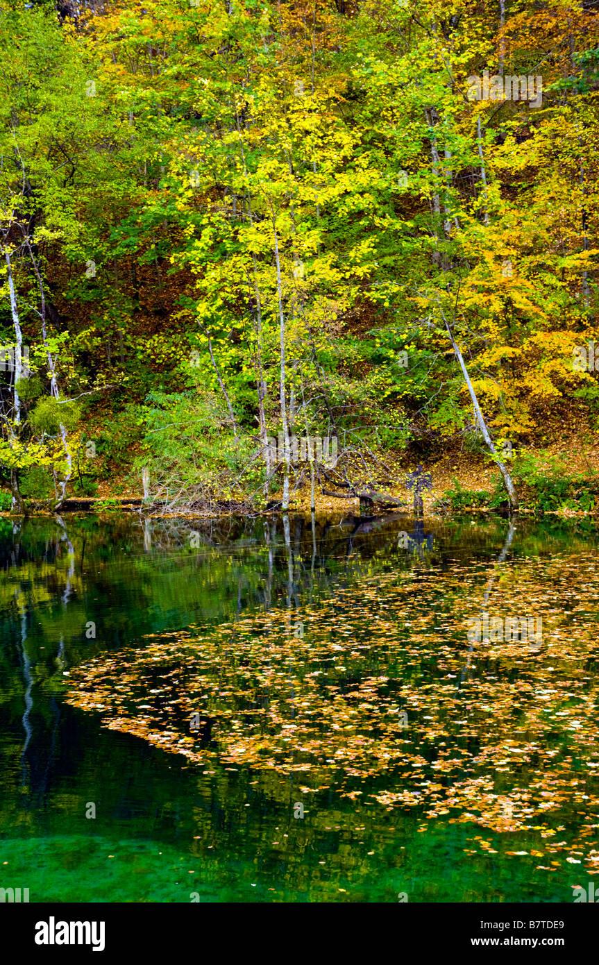 Fall foliage color in Plitvice Lakes National Park Croatia Stock ...