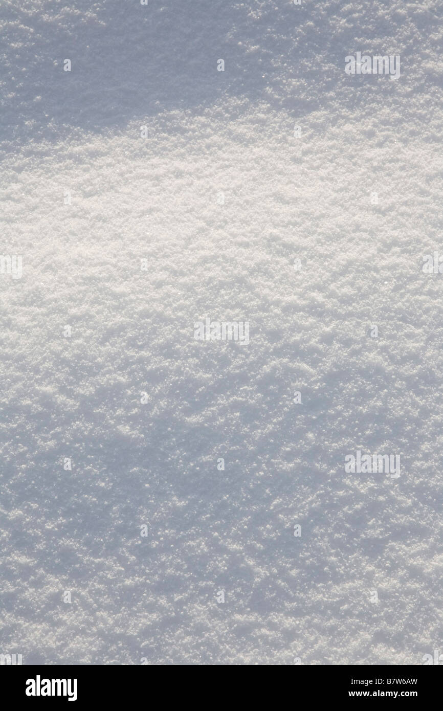 powdered snow - Stock Image