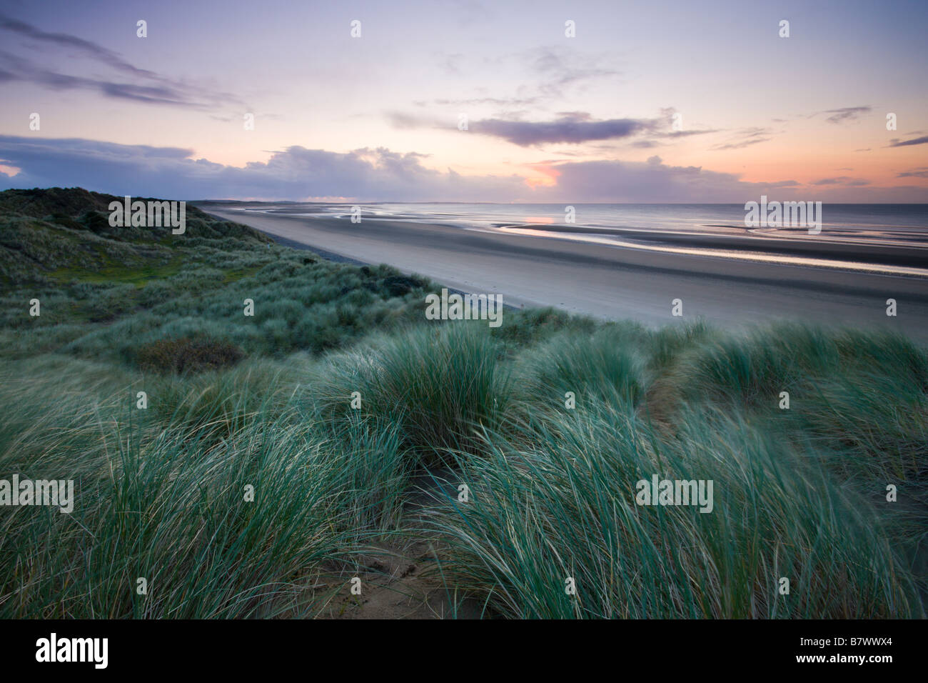 Sand dunes at Murlough Nature Reserve with views to Dundrum Bay County Down Northern Ireland - Stock Image