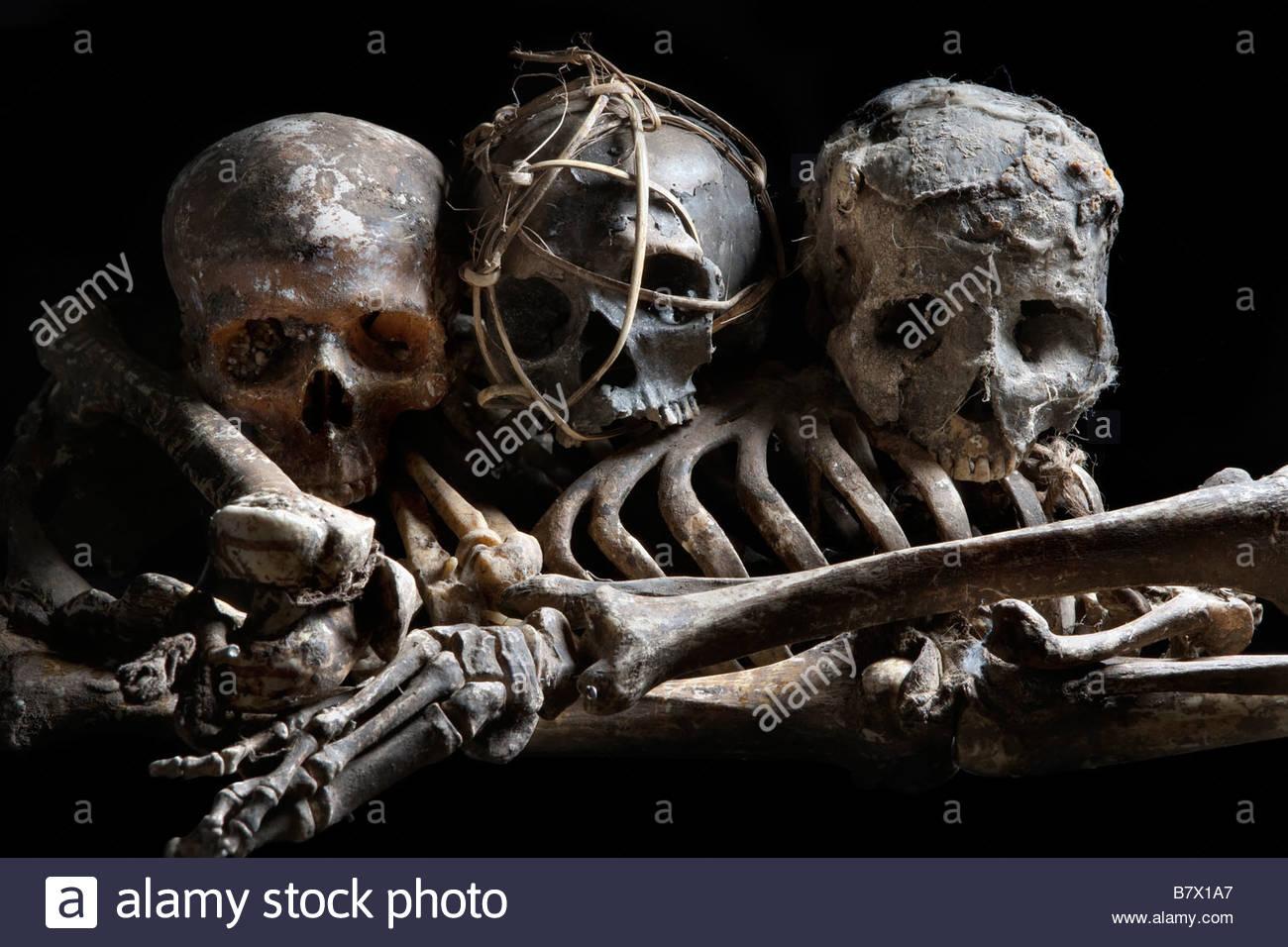 A Pile Of Skulls And Bones Stock Photos A Pile Of Skulls And Bones