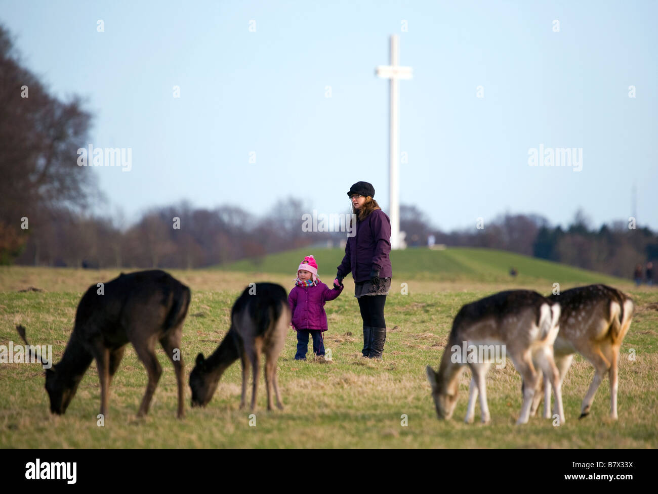 Mother and daughter look at Fallow Deer Dama dama grazing on the 15 acres in the Phoenix Park Dublin with the papal cross Stock Photo