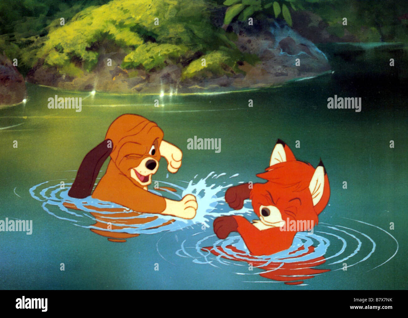 Rox Et Rouky The Fox And The Hound Year 1981 Animation Stock