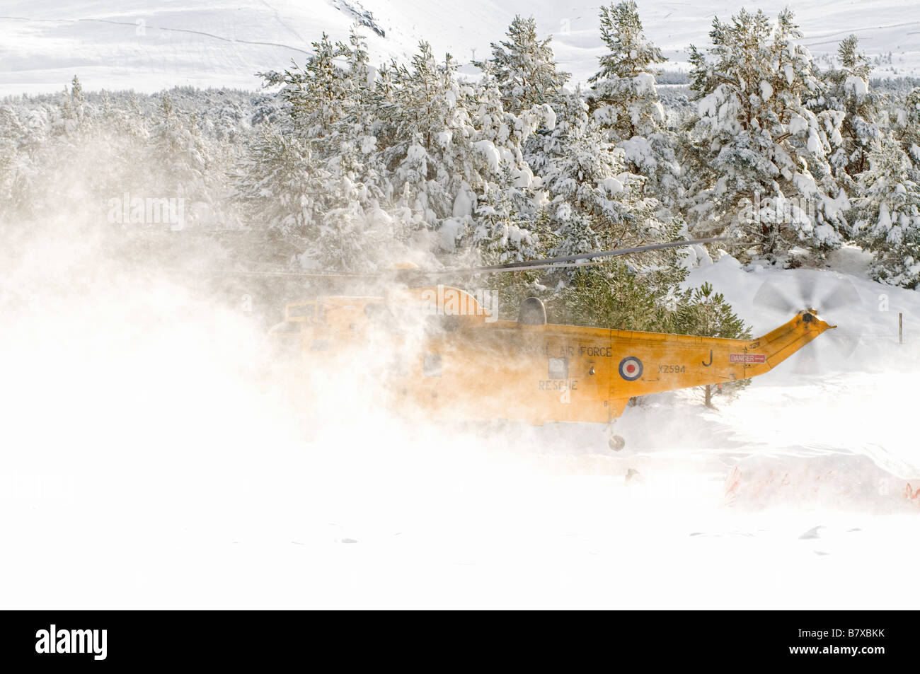 Sea King HAR.3 lifting off from Glenmore Lodge in the Cairngorms Inverness-shire Scotland UK    SCO 2042 Stock Photo