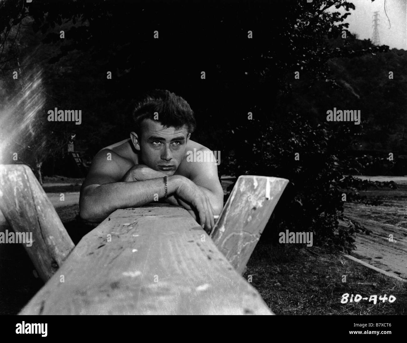 James Dean James Dean Date of birth 8 February 1931 Marion, Indiana