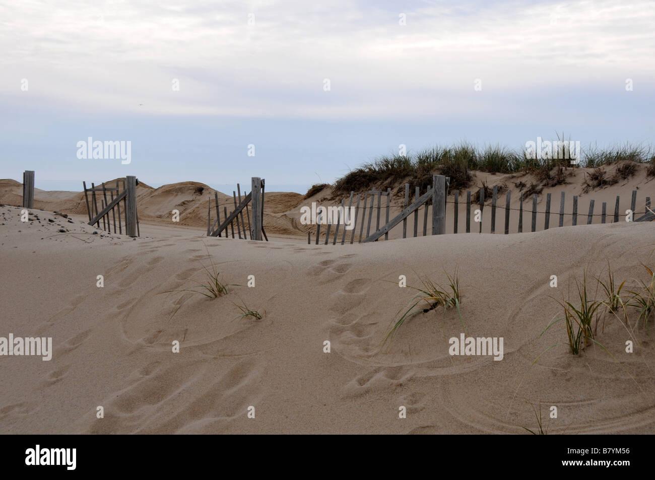 Sand dunes, Cape Cod Stock Photo