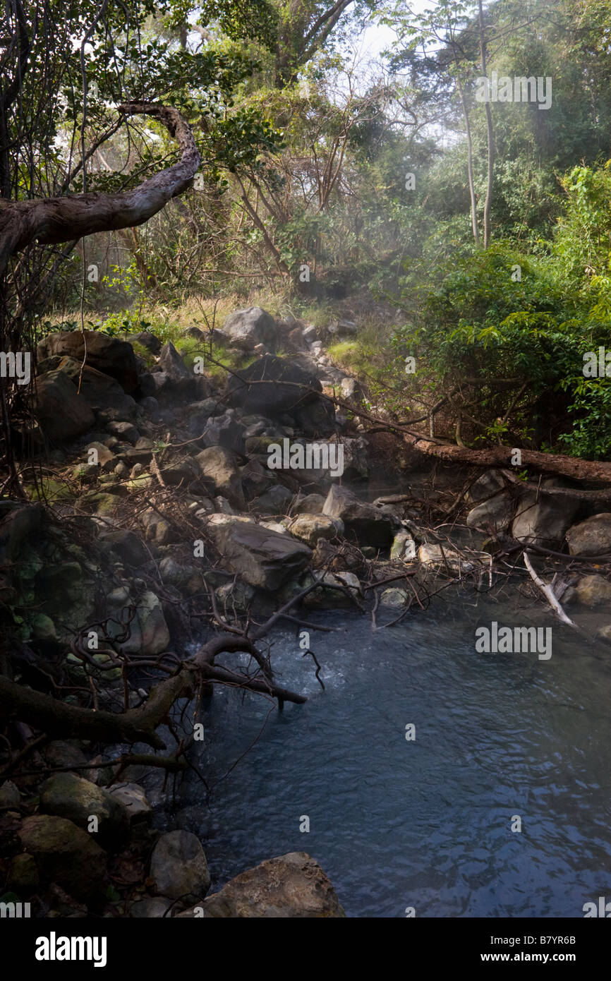 Steam and gases rise from volcanic mud pool in the forest at Rincon de la Vieja National Park in Guanacaste Province, Stock Photo