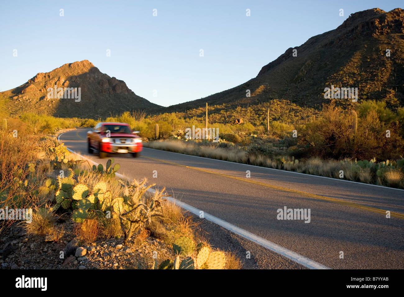 A car drives through Saguaro West National Park on Gates Pass Road just west of the Overlook near the Yetman and - Stock Image