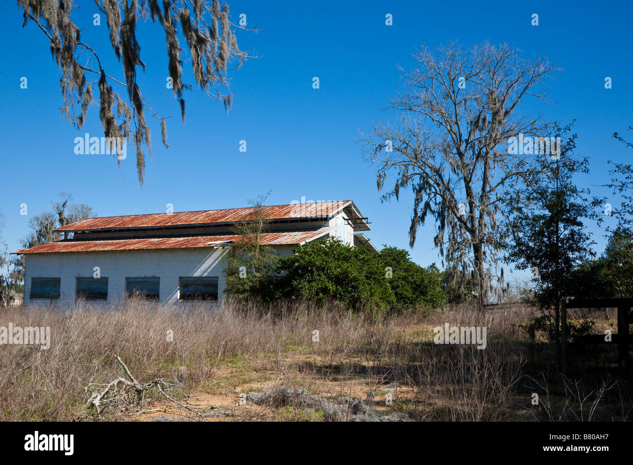 Abandoned horse barn in Ocala, Florida - Stock Image