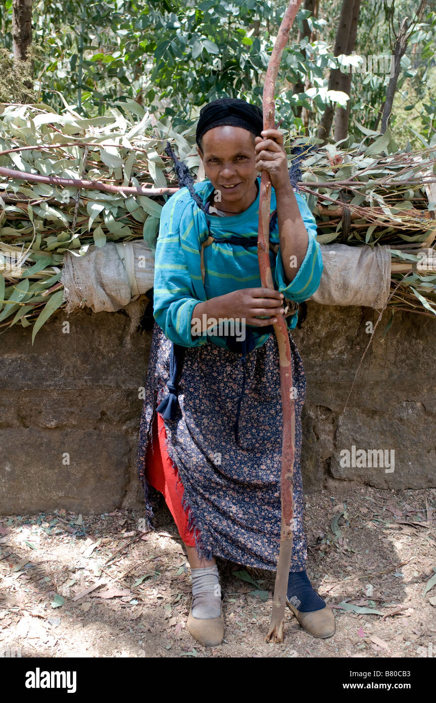 Woman carry wood on their backs Addis Abeba Ethiopia Africa - Stock Image