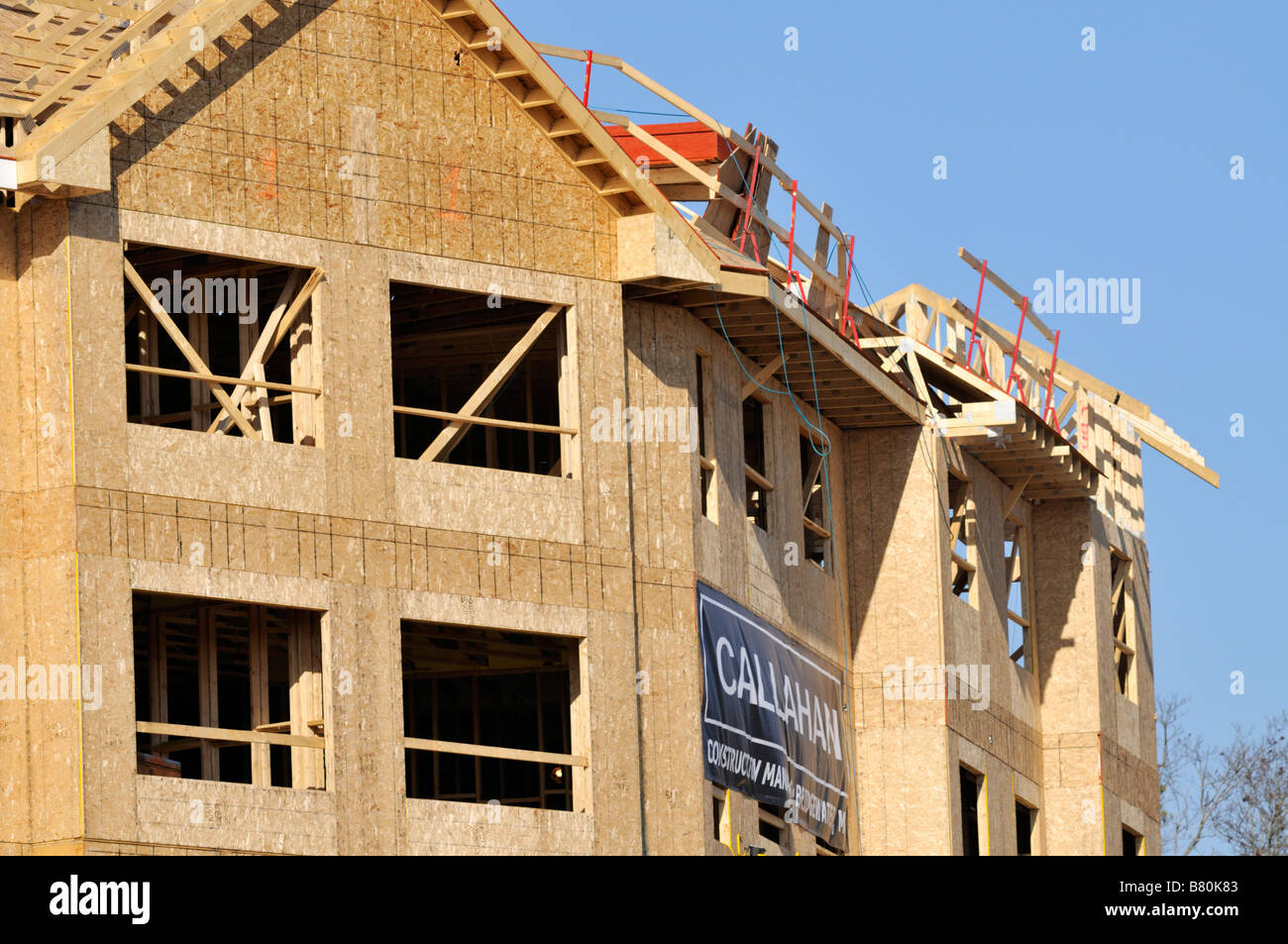 Wood frame construction of new apartment building with windows cutout framing and fiber board - Stock Image