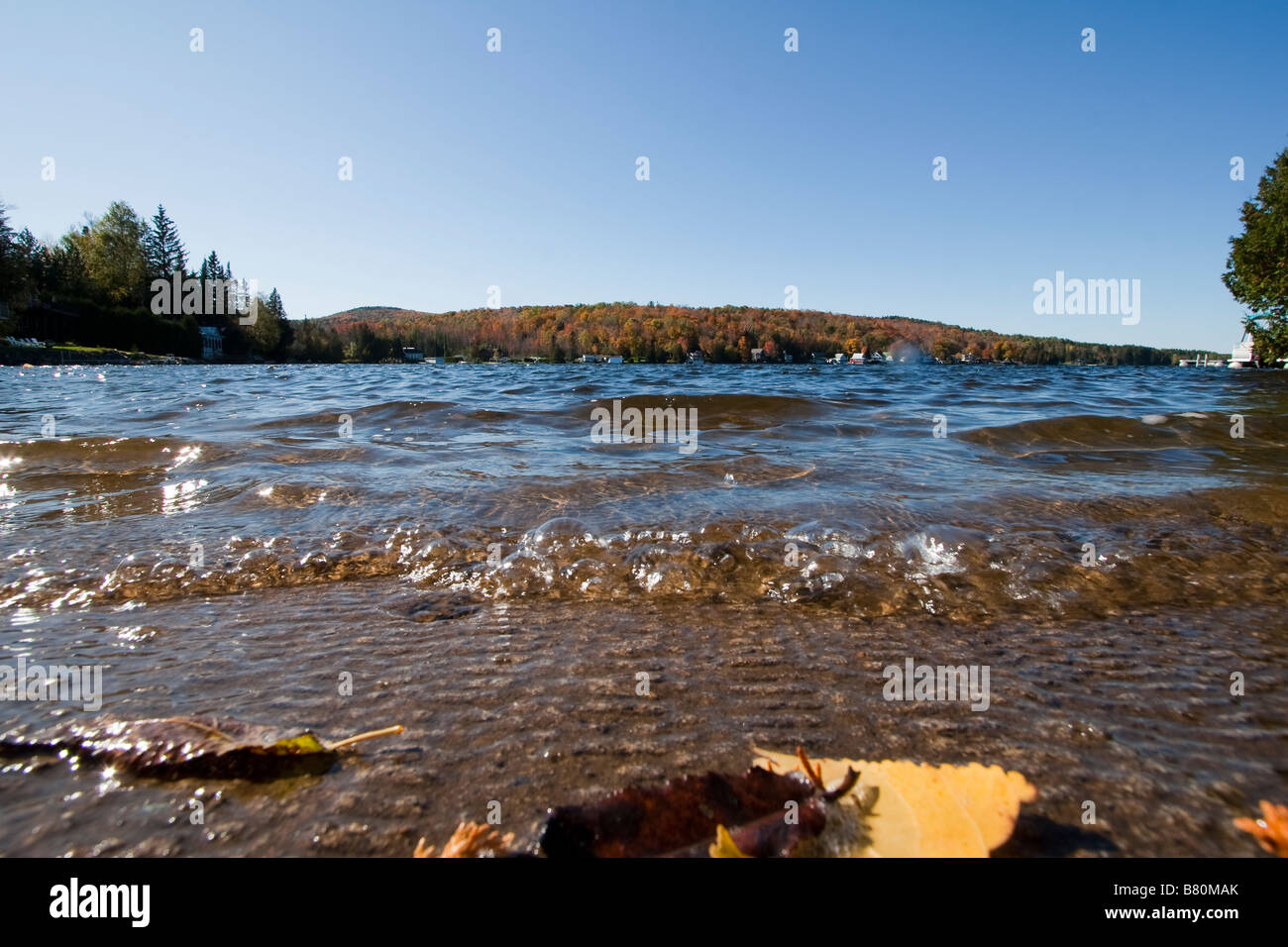 Water ripples lapping up on a shore October 7 2008 - Stock Image
