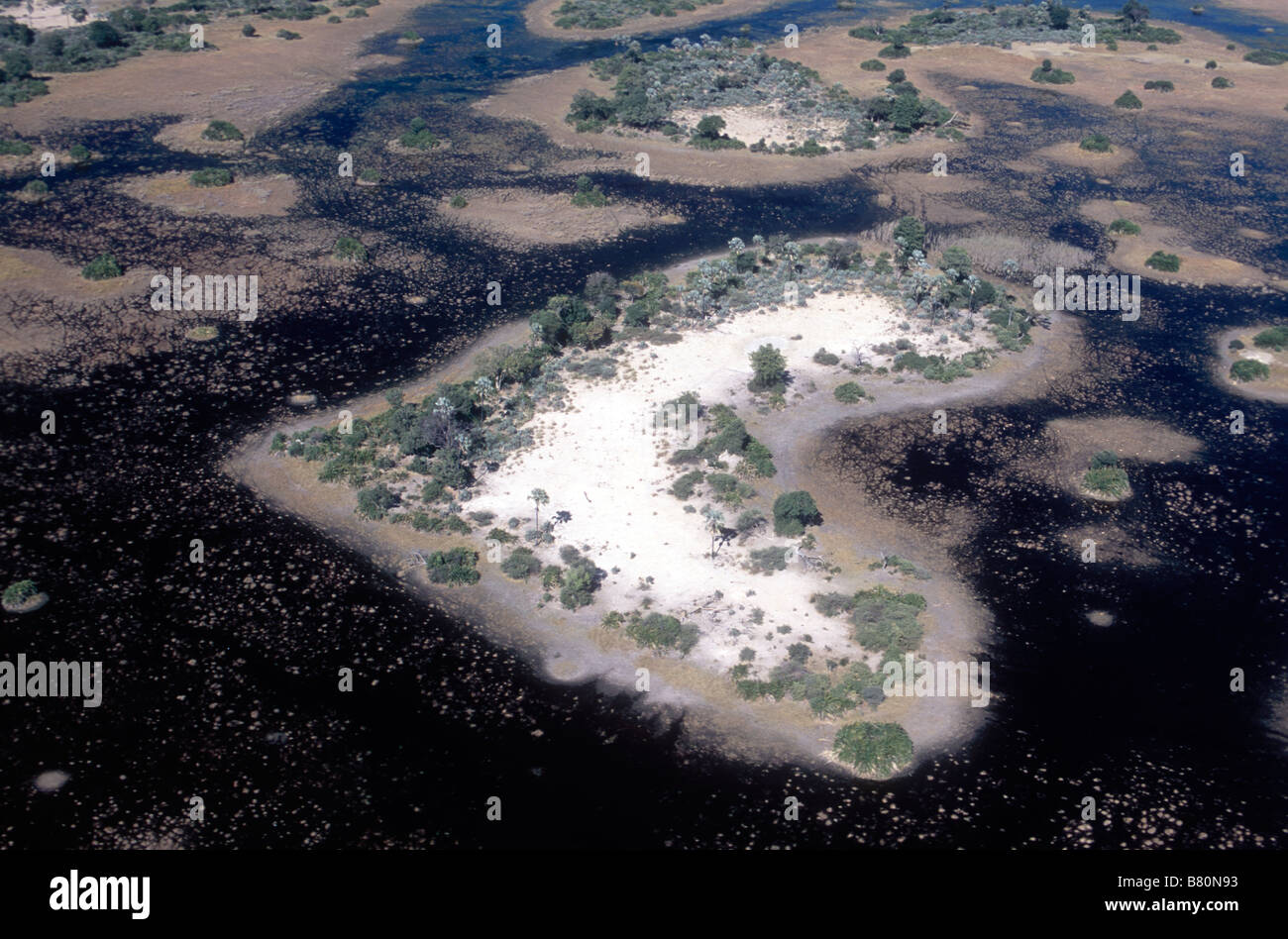 Aerial of Islands in the Okavango Delta - Stock Image