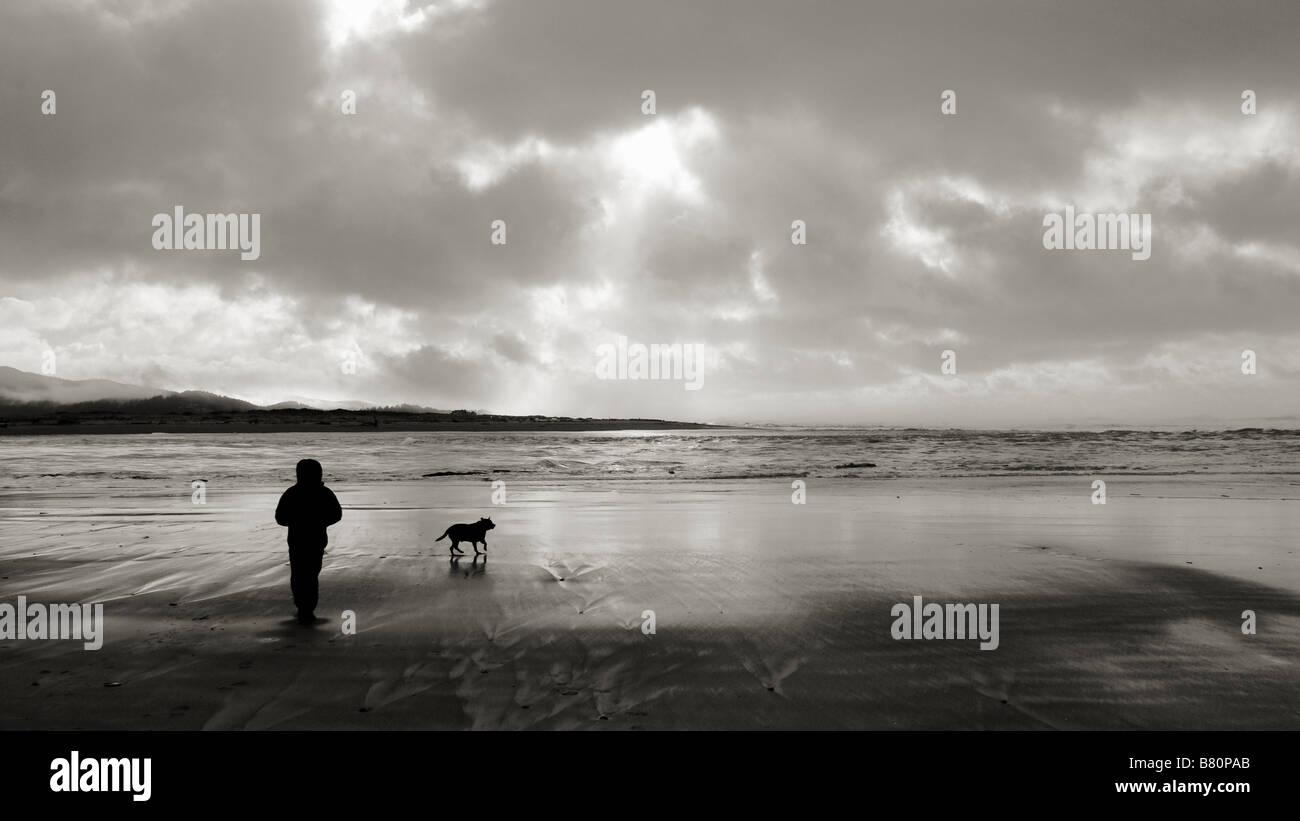 A man walk his dog on an Oregon beach with his dog at Sunset.  Lincoln City, Oregon, USA. - Stock Image