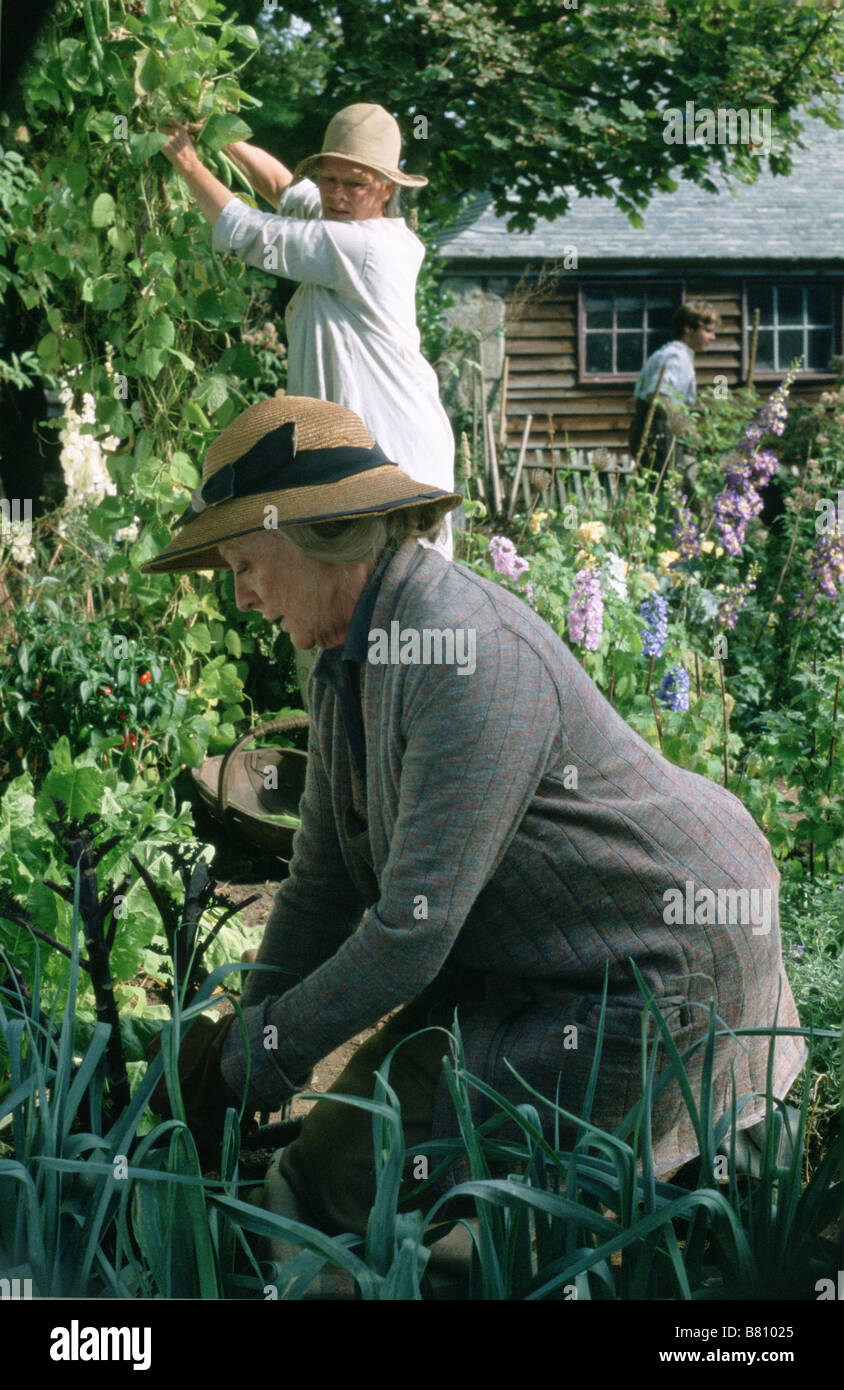 Les dames de Cornouailles Ladies in lavender  Year: 2005 - UK Maggie Smith,  Director: Charles Dance Stock Photo