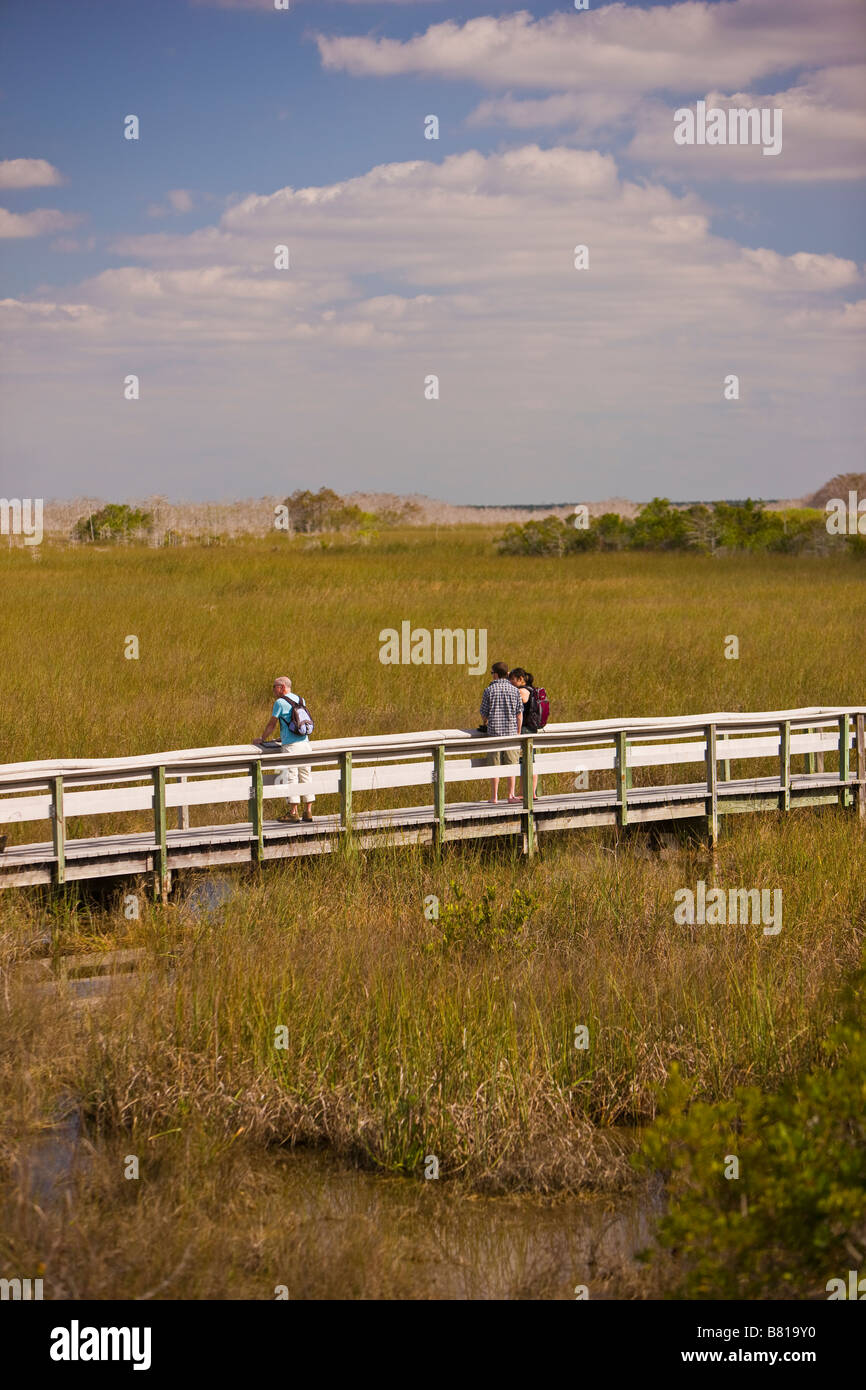 EVERGLADES FLORIDA USA - People on boardwalk along the Pa-hay-okee Trail, in Everglades National Park - Stock Image
