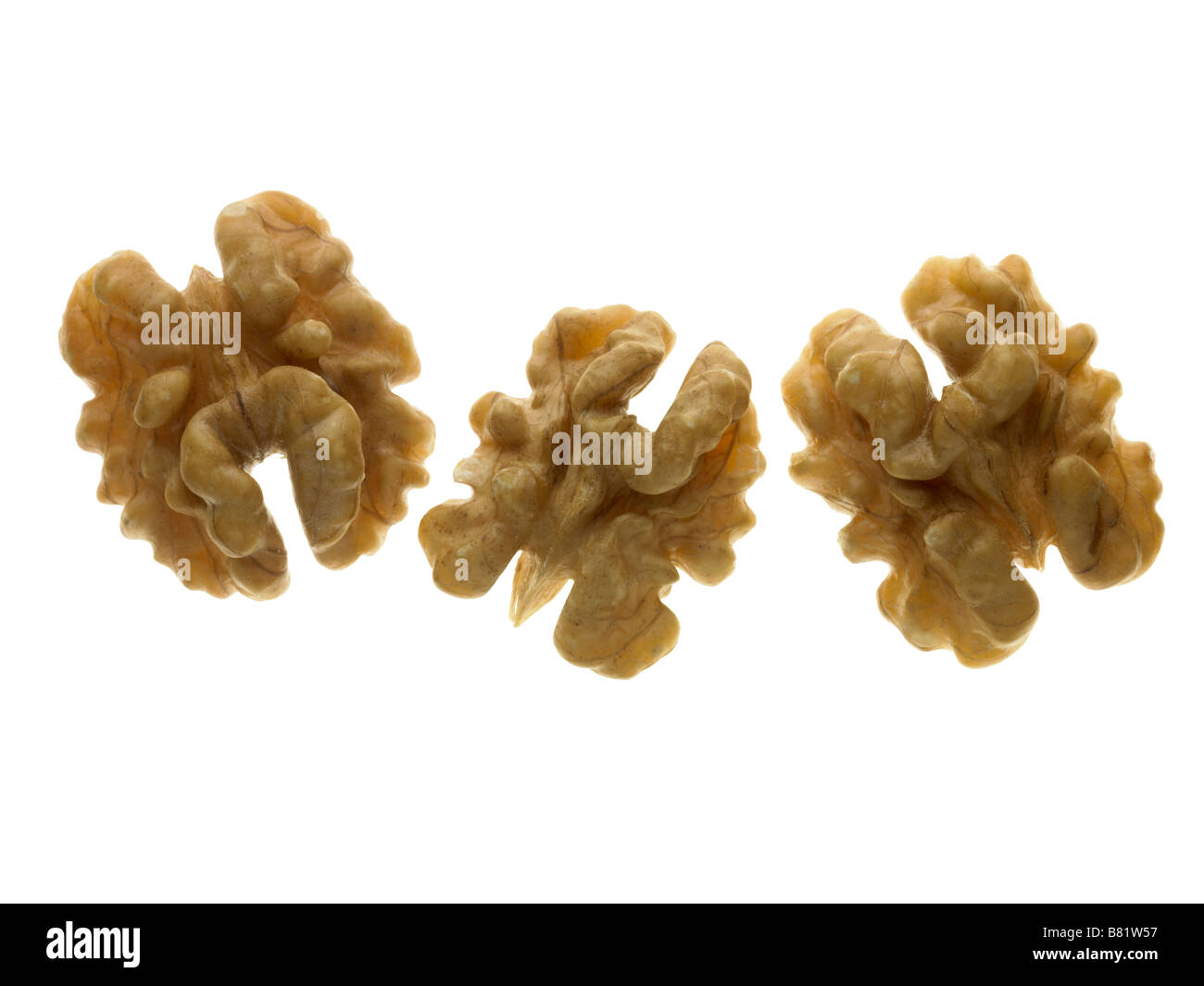 walnut halves - Stock Image