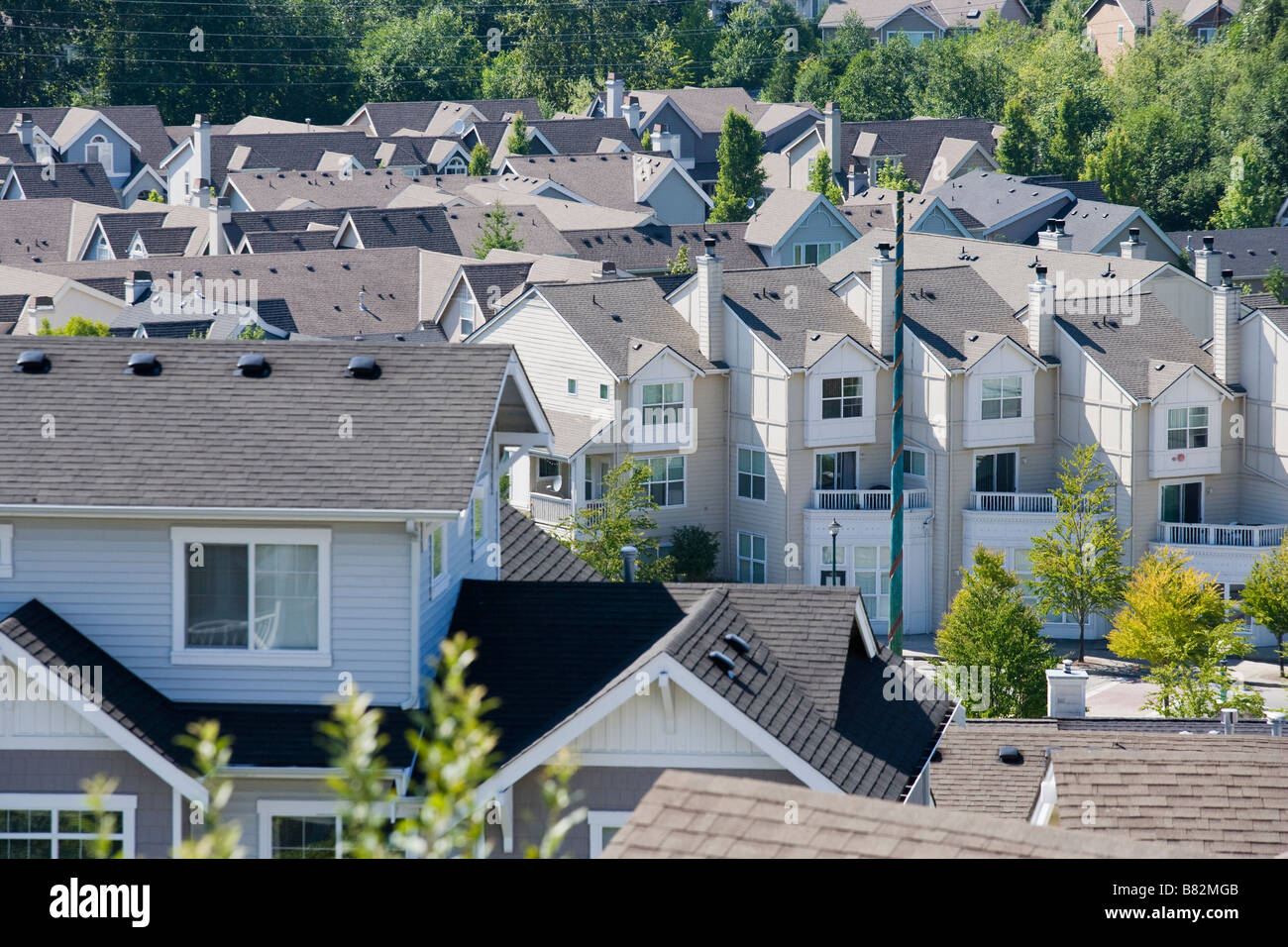 High angle view of a housing development in Issaquah WA United States - Stock Image