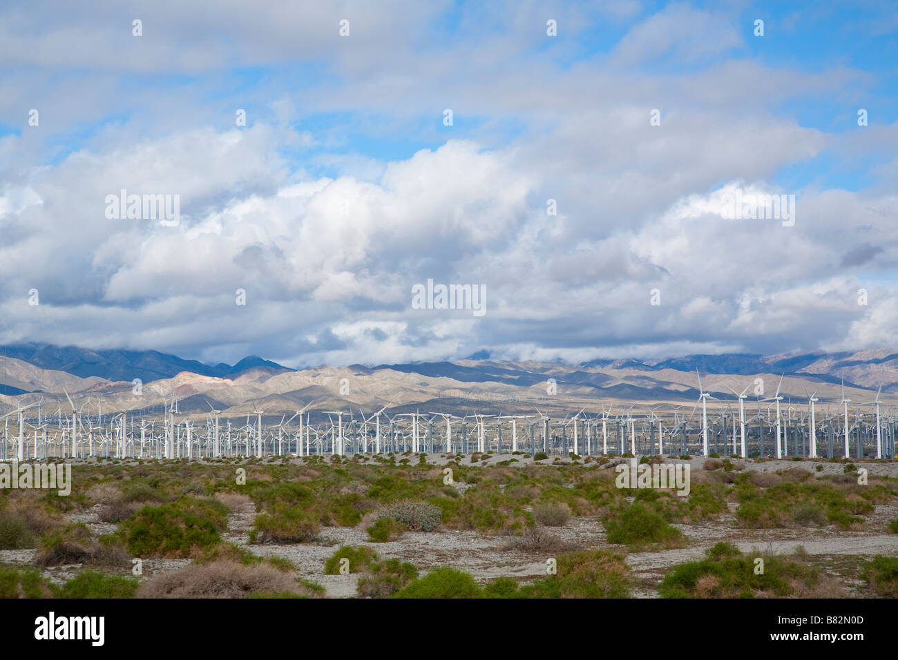 Large fields of wind turbines outside of Palm Springs California - Stock Image