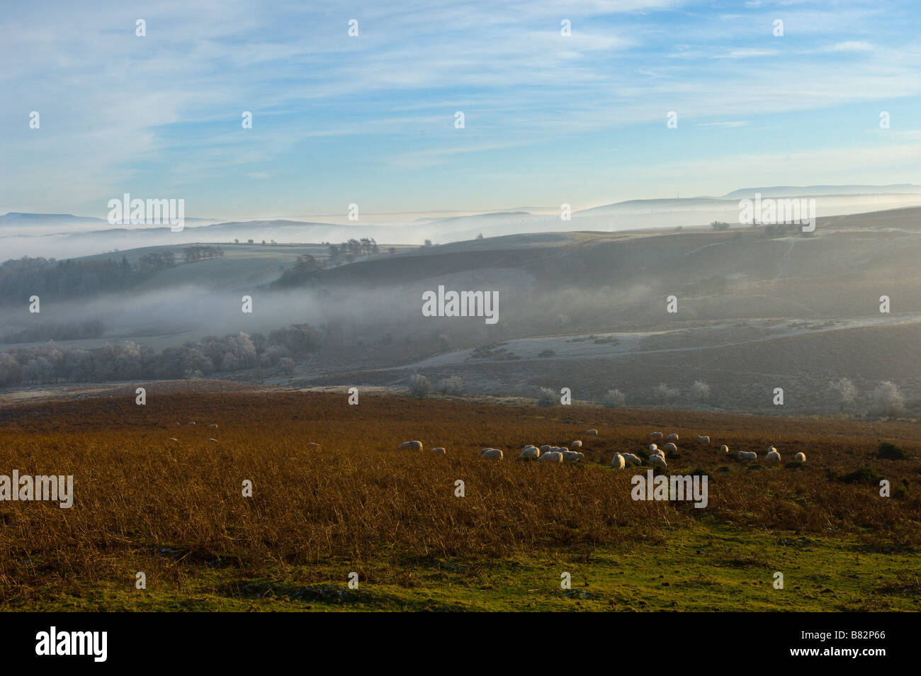 Powys Mid Wales United Kingdom Europe - Stock Image