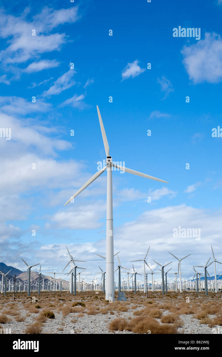 One tall wind turbine stands out in front of a large field of wind turbines outside of Palm Springs California - Stock Image