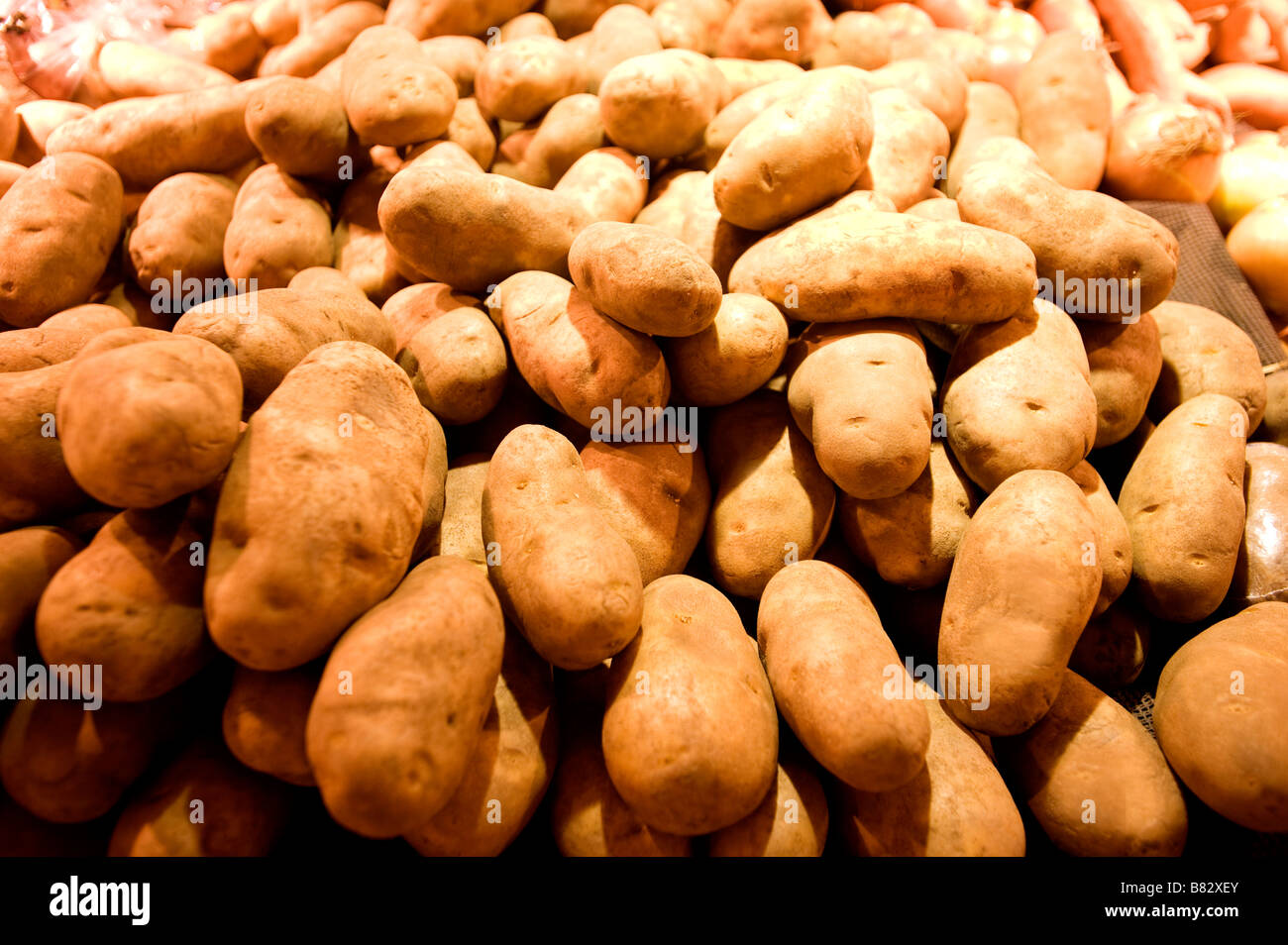 In the produce section of a supermarket russet potatoes await their destiny - Stock Image