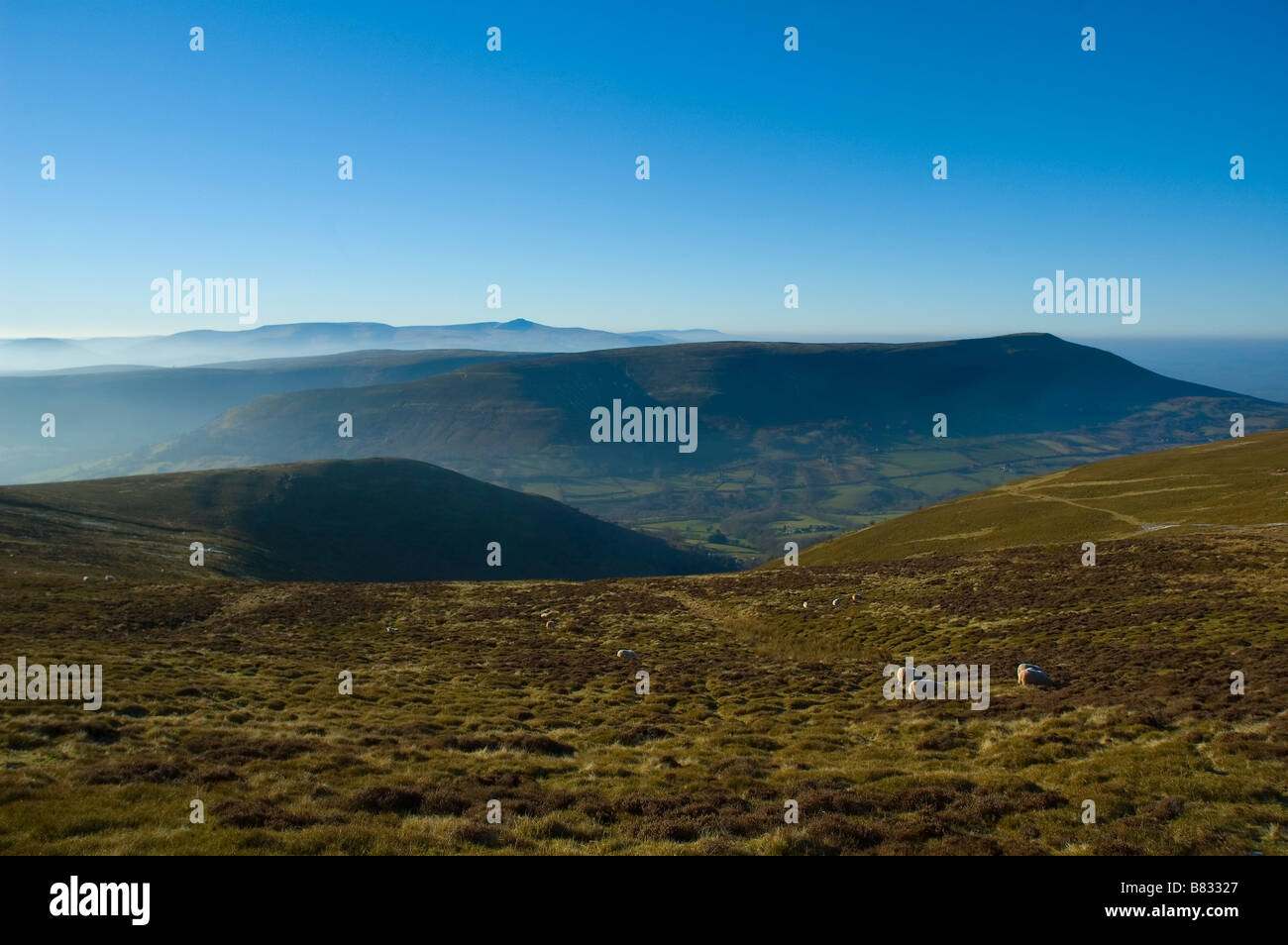 Black Mountains Brecon Beacons National Park Powys Mid Wales United Kingdom Europe - Stock Image