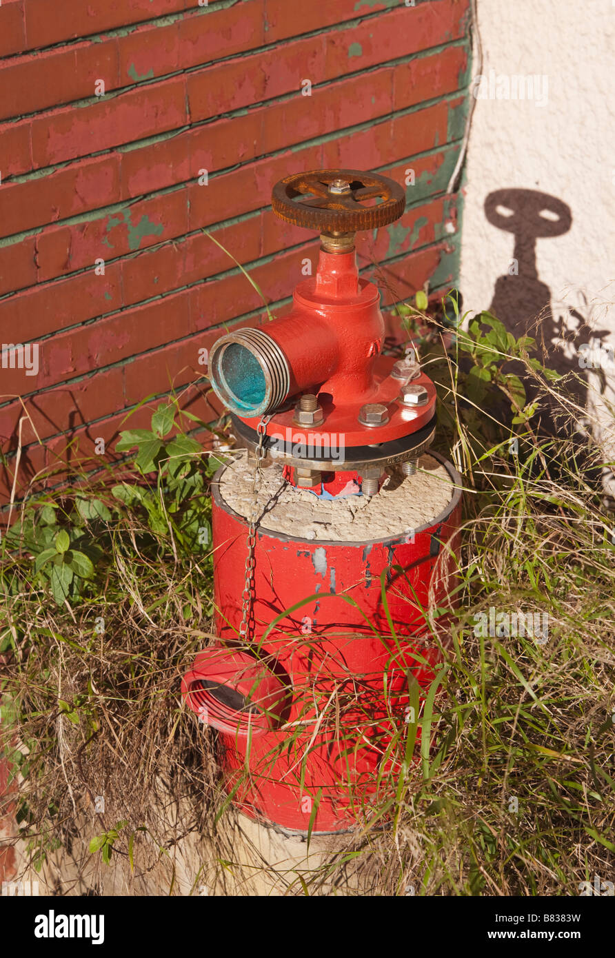 Fire hydrant overgrown with grass and weeds - Stock Image