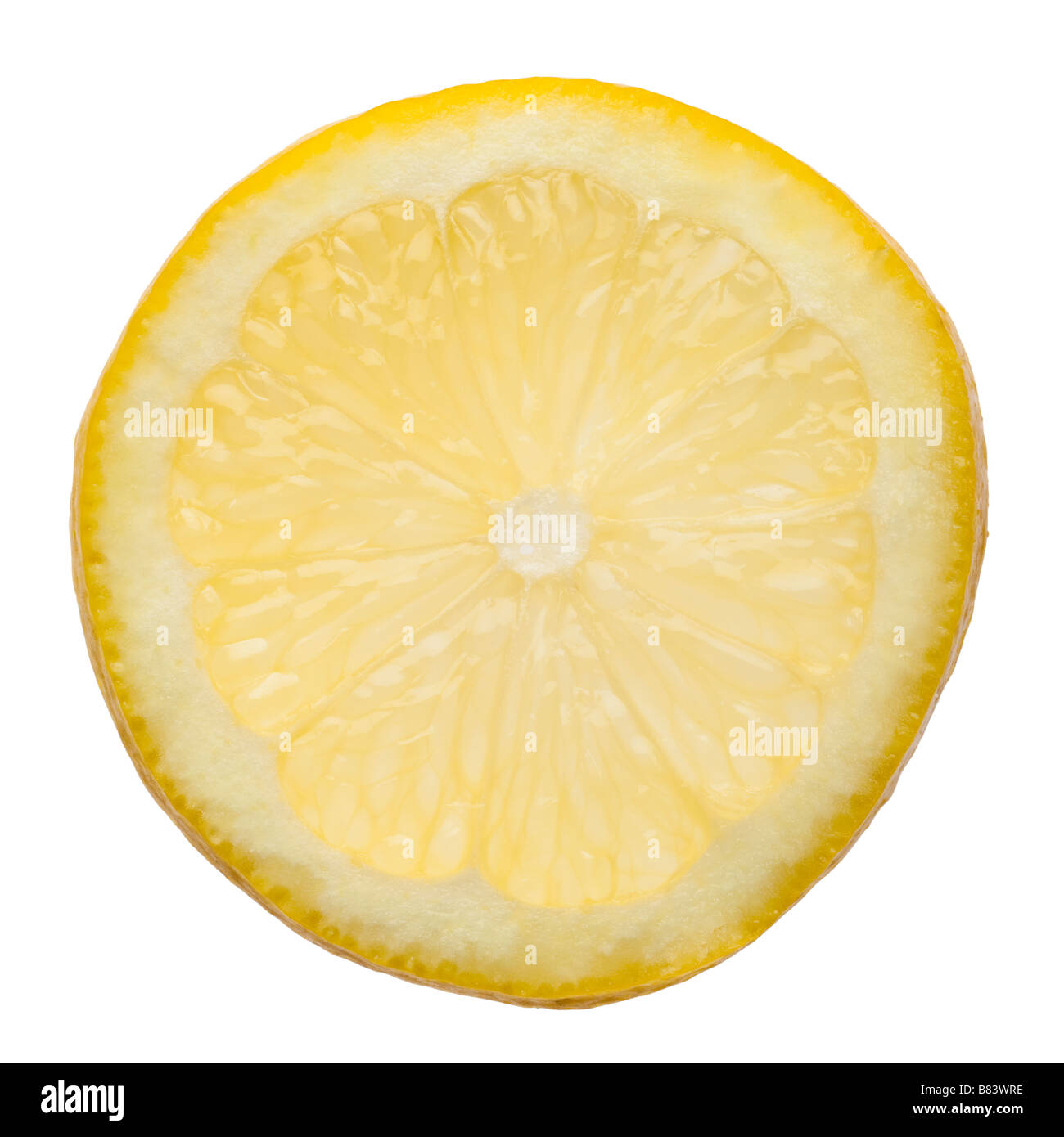 Slice of lemon on white closeup - Stock Image