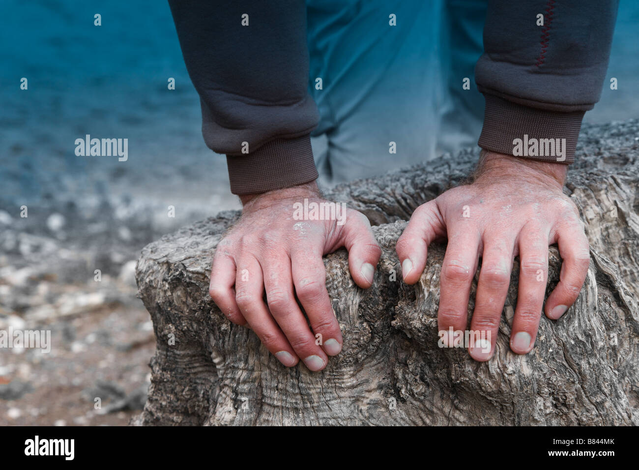 Two hands of a man leaning on a tree stump - Stock Image