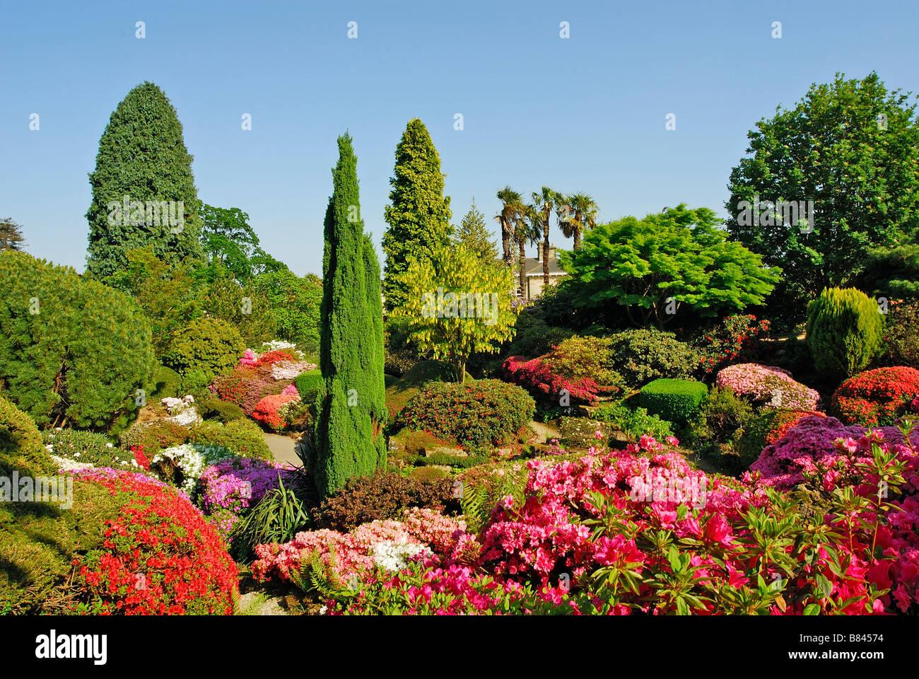 Leonardslee garden Sussex UK - Stock Image