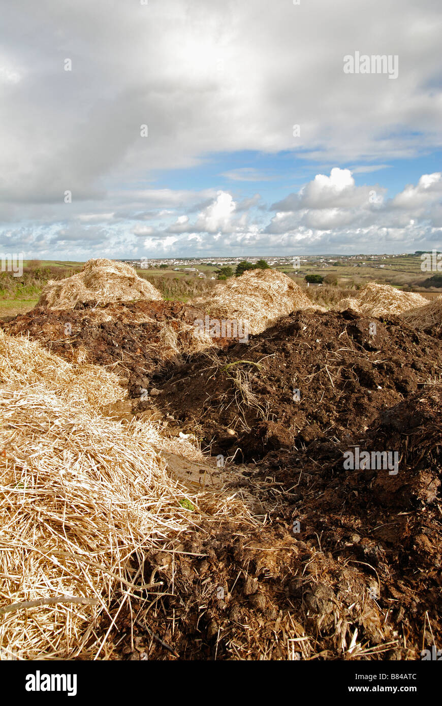 mounds of manure in fields near bristol,england,uk - Stock Image