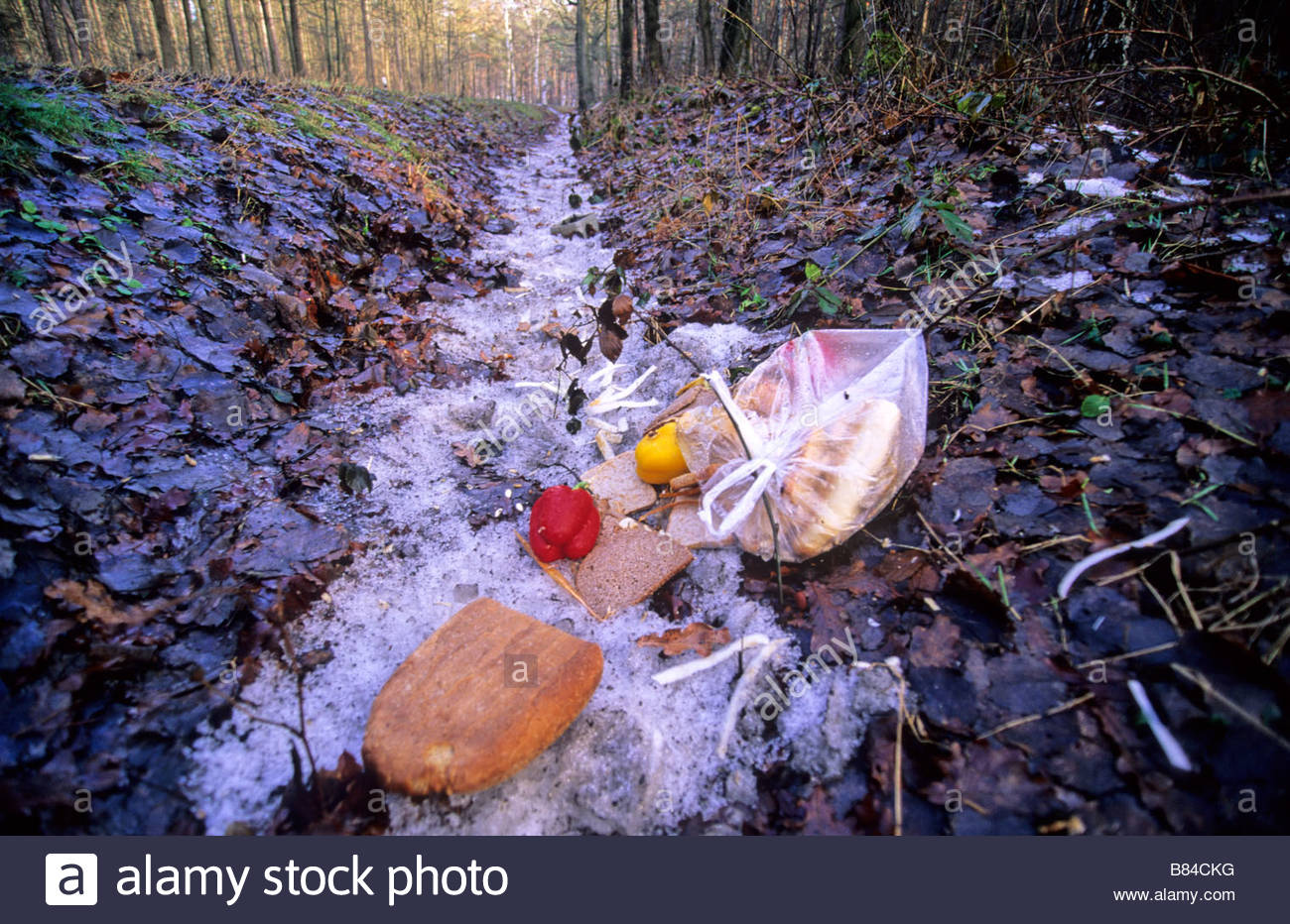 dumped food Germany weggeworfene Lebensmittel - Stock Image