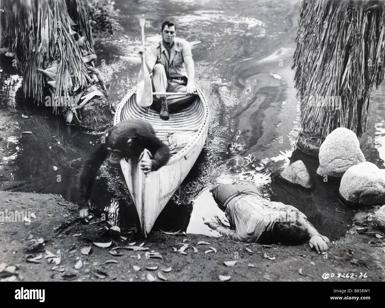 Cannibal Attack  Year : 1954 Director : Lee Sholem Johnny Weissmuller - Stock Image