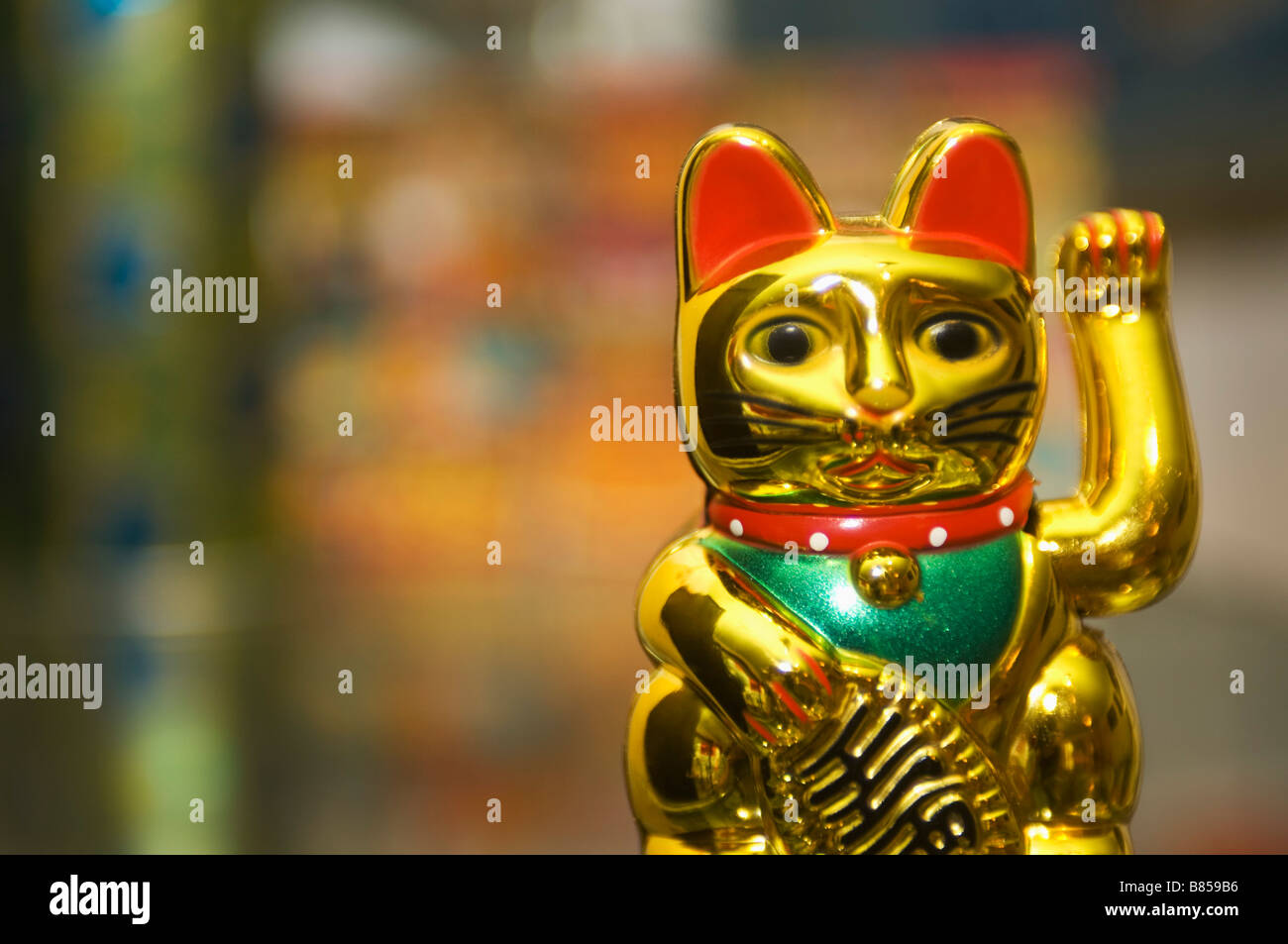 still life of maneki neko - Stock Image