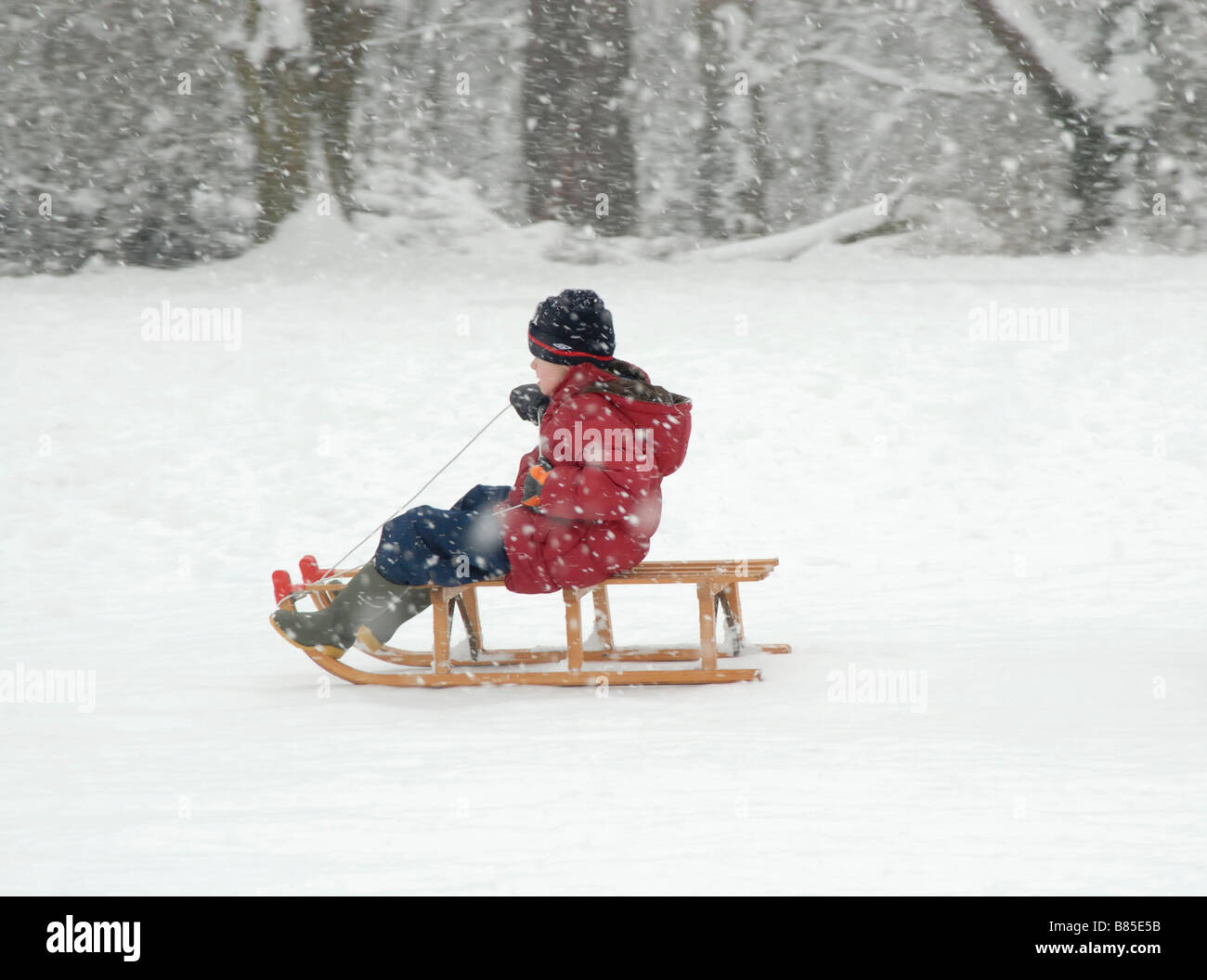 Winter fun: Young boy on a sledge in the snow, Cheam, south London, Surrey, England - Stock Image