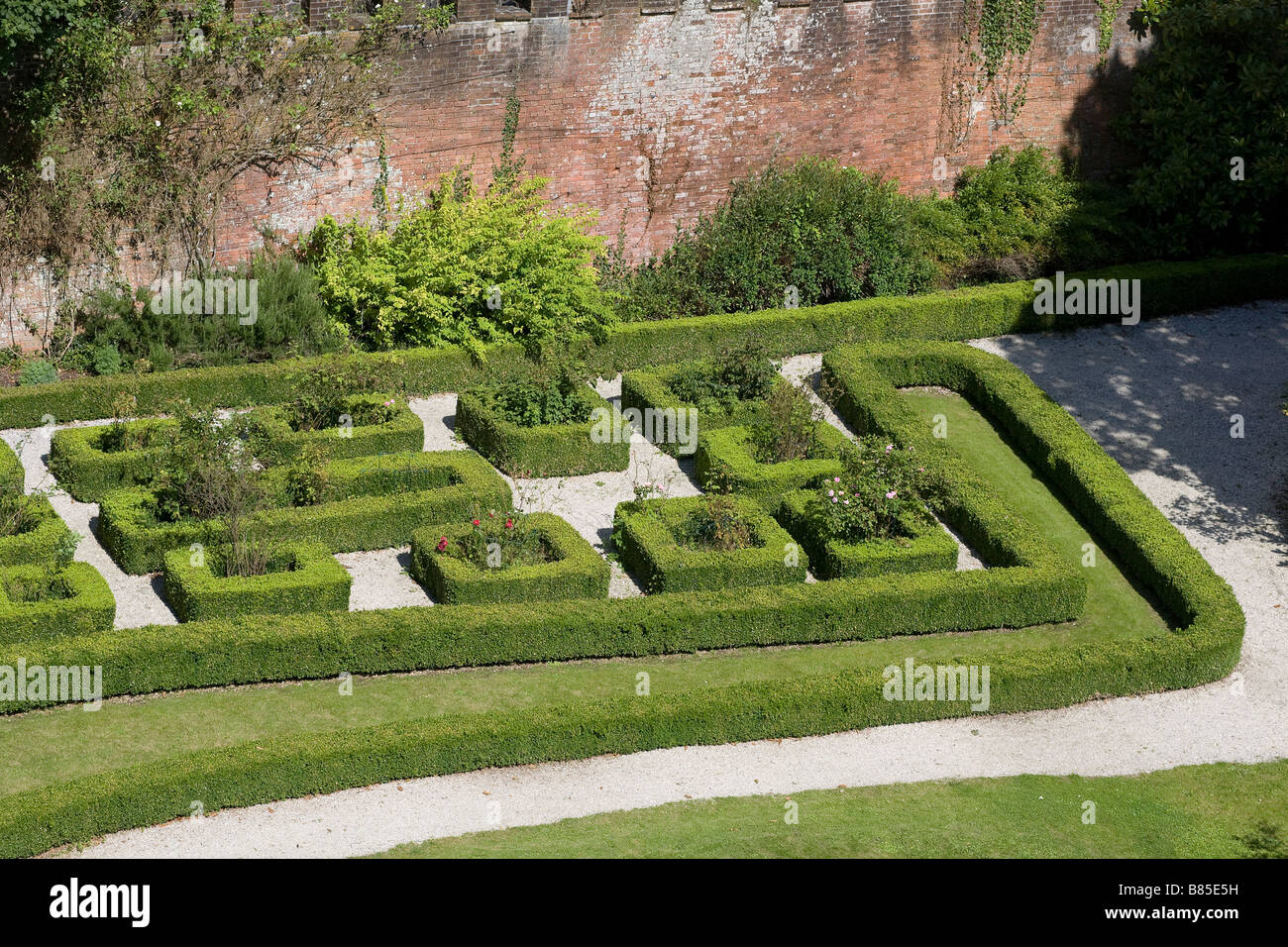 Green shrubbery maze at Laugharne castle in Laugharne Carmarthenshire South Wales - Stock Image